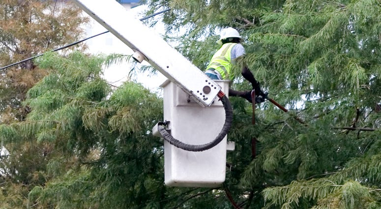 Tree Trimming Power Outage